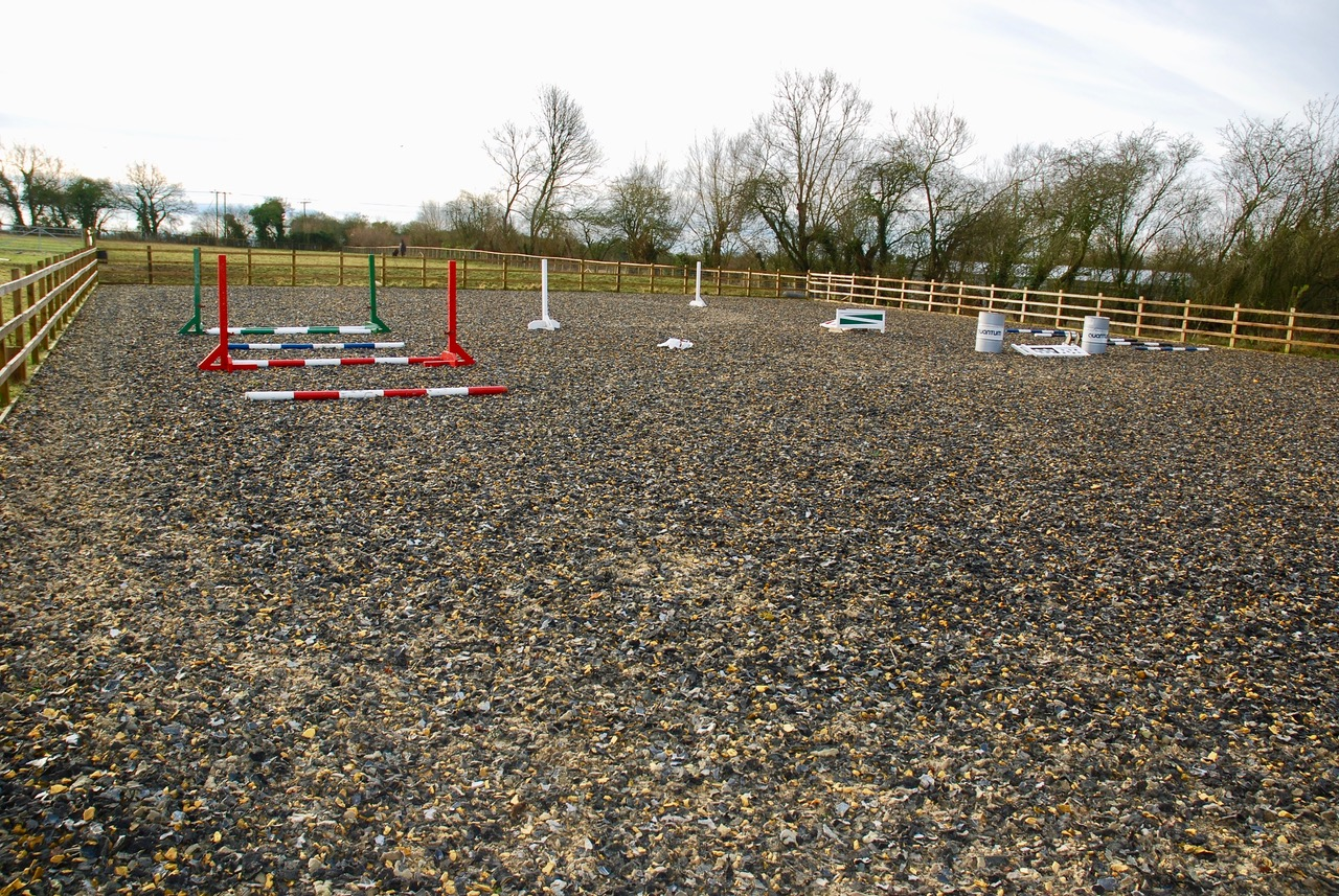 horse training arena
